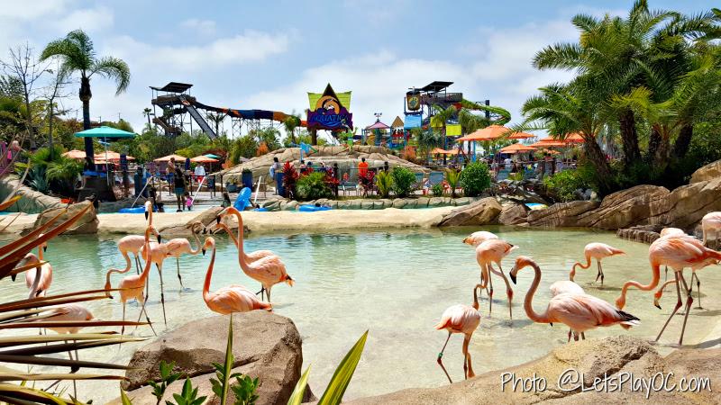 Aquatica San Diego Sea World Waterpark Lets Play Oc